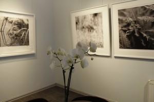 utstilling2