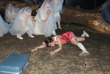 Foto: Linda Y. Bekkevold. Død og fordervelse i Sophies hage.