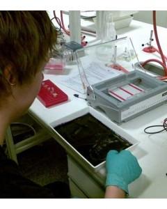 Kristoffer Hjellen under labdag på skolen.